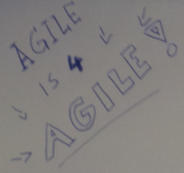 agile_is_for_agile